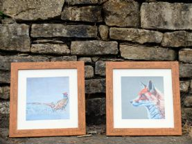 Framed Prints of 'Fox' and 'Pheasant'